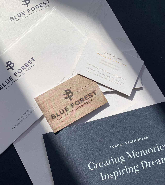 Blue Forest Rebrand